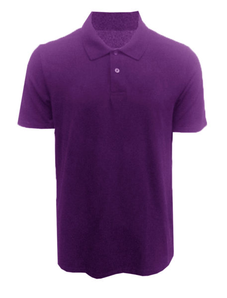 BKESP_PT010X (Front view Purple  Polo Tee)